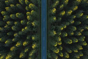 Where the ESG Rubber Meets the Road