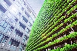 Global Sustainable Equity: News and Opportunities (October 2020)