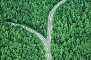 The Road Less Traveled: How Differentiated Thinking Can Benefit Investors
