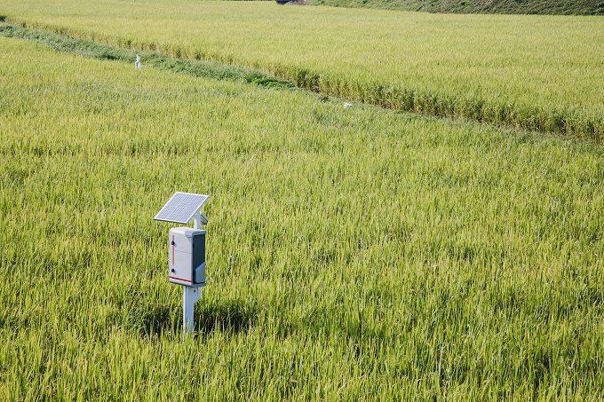 Agriculture-solar