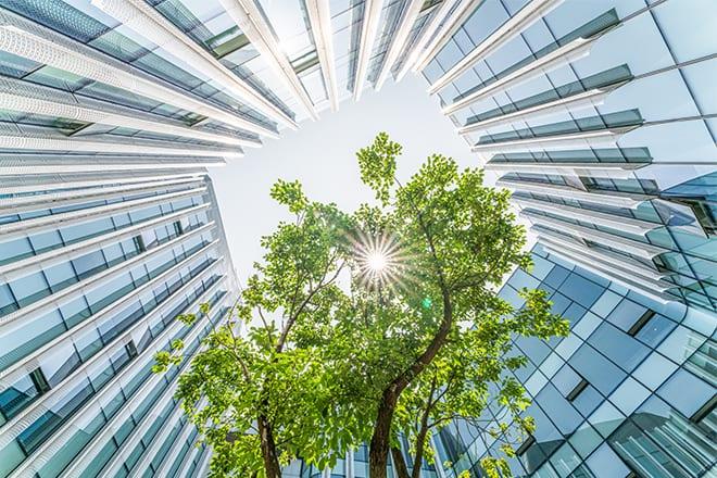 CorporateStatement_GettyImages-1225383258_660x440
