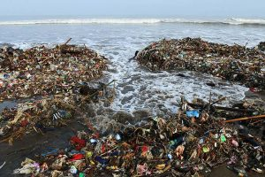 Breaking down plastic pollution: Part II