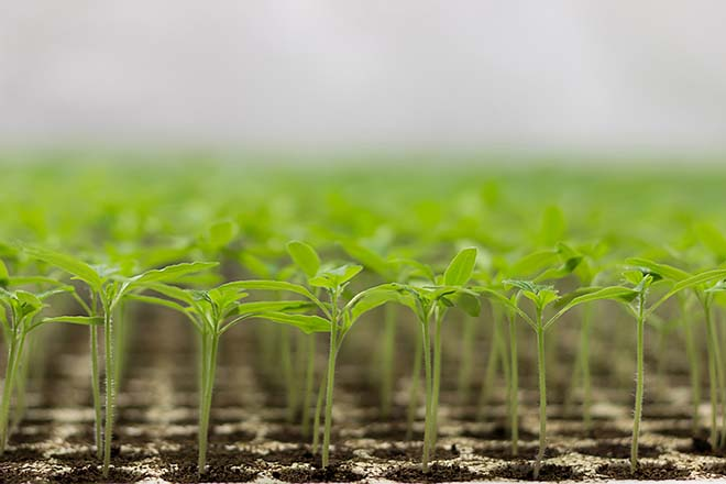 Demystifying ESG: creating a clear investment case