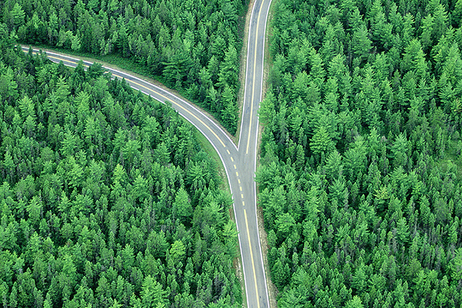 Fork in road through forest, aerial (Digital Composite)
