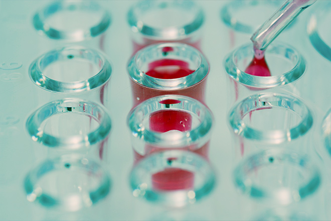 Taking a Balanced Approach to Investing in Cancer Therapy