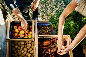The Growing Organics Market Presents a Natural Investment Opportunity