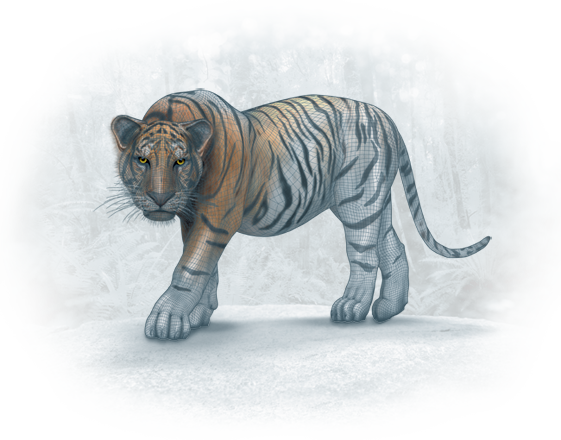 JH_Tiger_H440_Colours