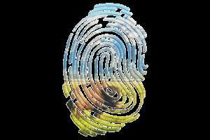 Thumbprint_Buffalo_660x440px