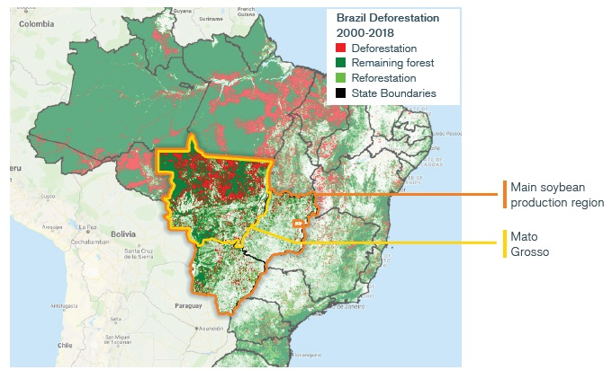 Mato Grosso is an important region for soybean production