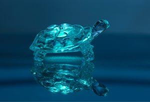 Aandelenmarktneutraal: onderschat nooit een schildpad