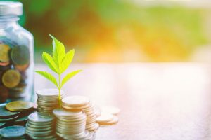 Our Approach to Environmental, Social and Governance considerations (ESG)