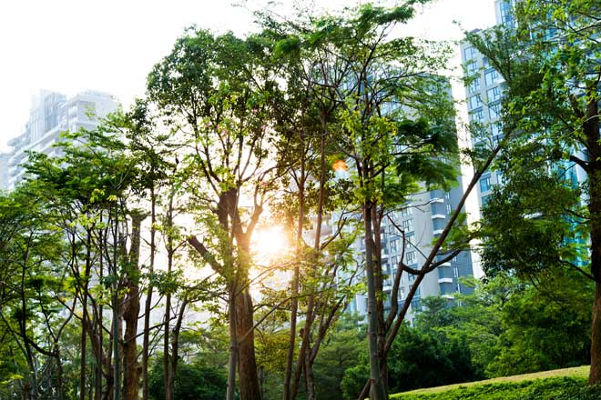 Why ESG analysis finds quality companies