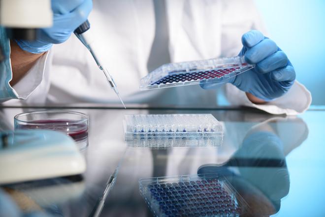 Global Life Sciences: Unser Ansatz bei der Suche nach innovativen Unternehmen im Bereich Krebstherapie