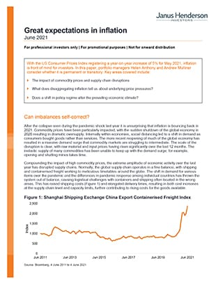 pdf-promo-great-expectations-in-inflation